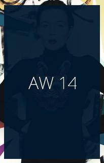 AW 14